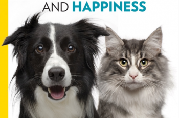Be The Best Pet Owner You Can Be