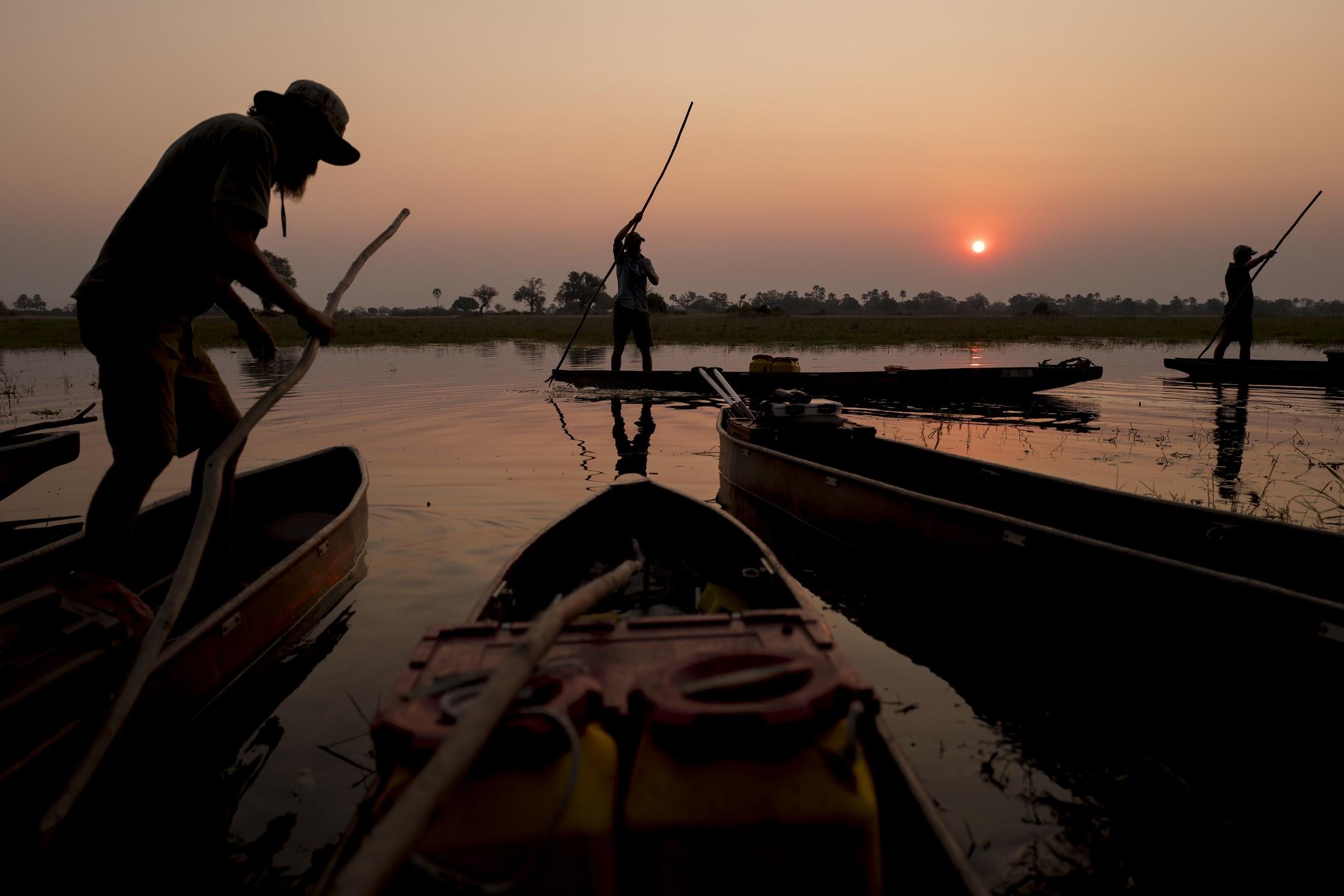 picture of Into the Okavango