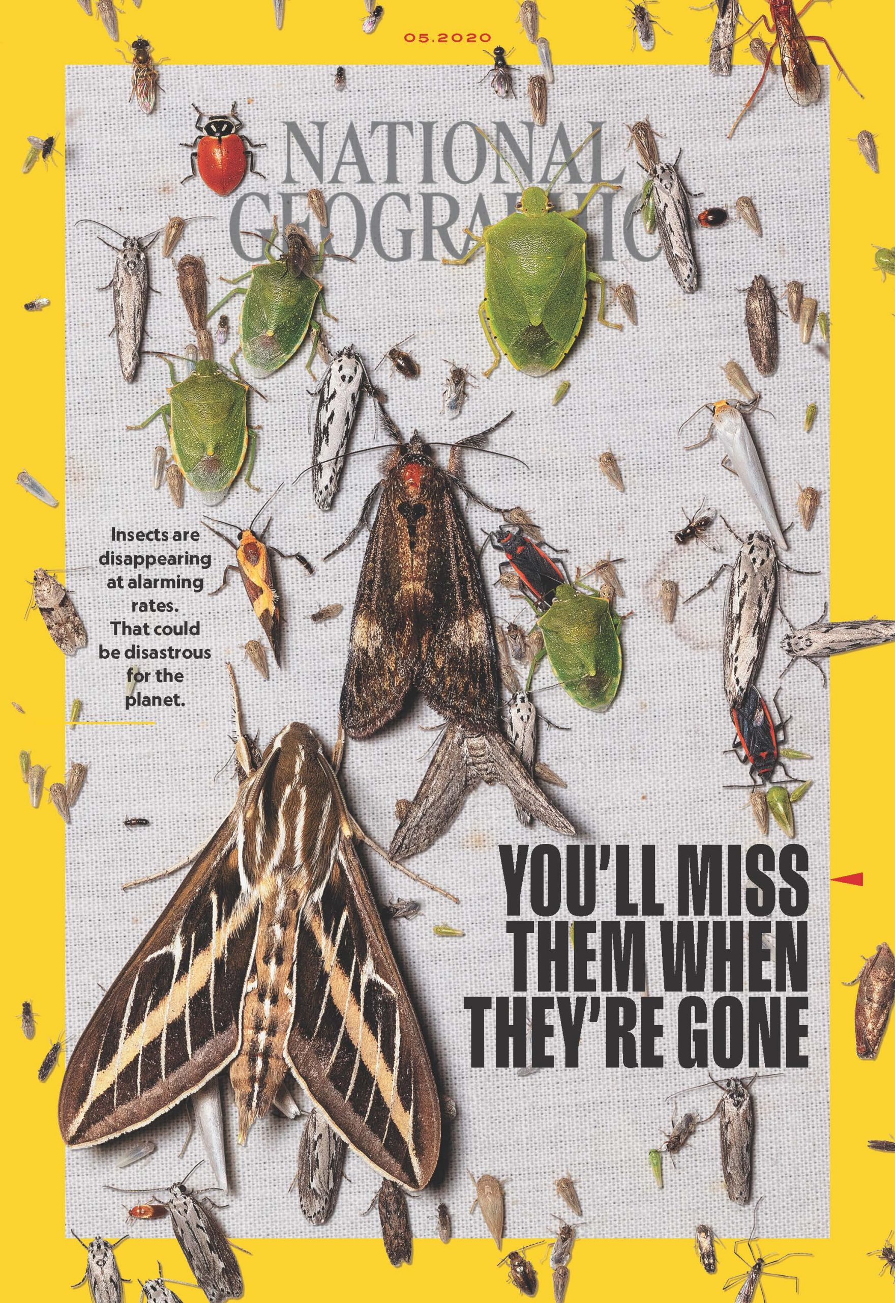 Magazine Highlights May 2020