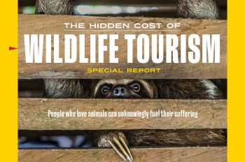 Author of Our Investigative Report on the Global Wildlife Tourism Industry Shares Her Perspective