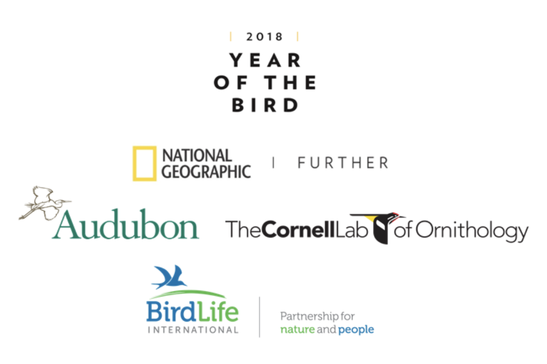 picture of Year of the Bird partners