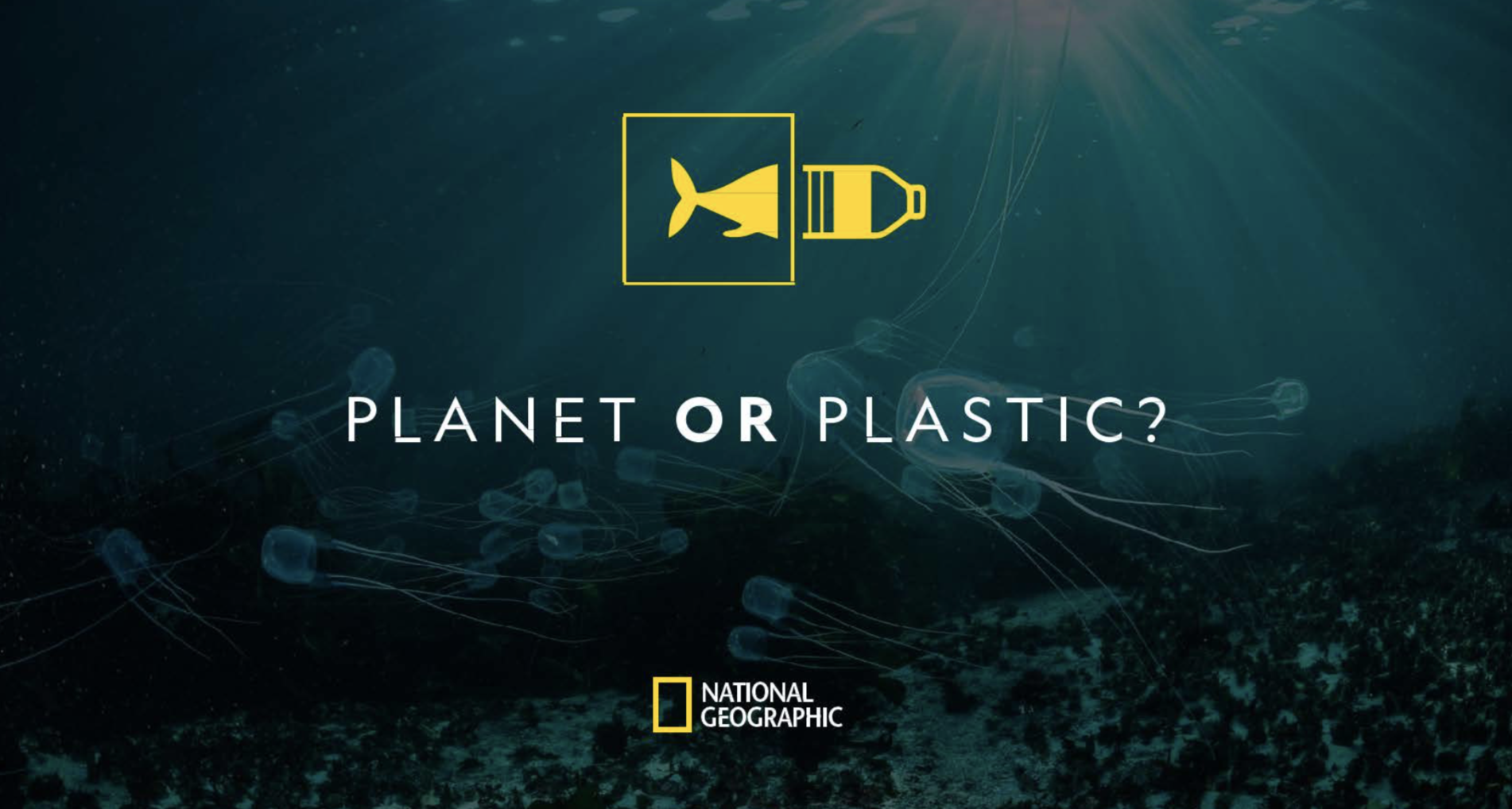 Photo of Planet or Plastic banner