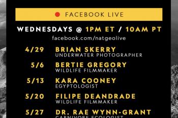 'National Geographic Live' Begins New Virtual Speaker Series