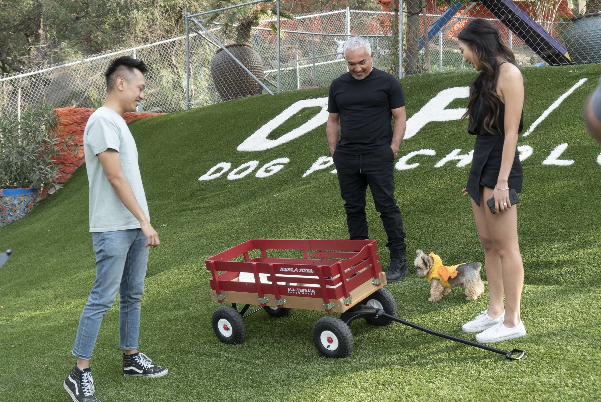 The Pack Is Back! Cesar Millan Returns Home to National Geographic in New Series 'Cesar's Way' (wt)
